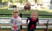 zoopark-4